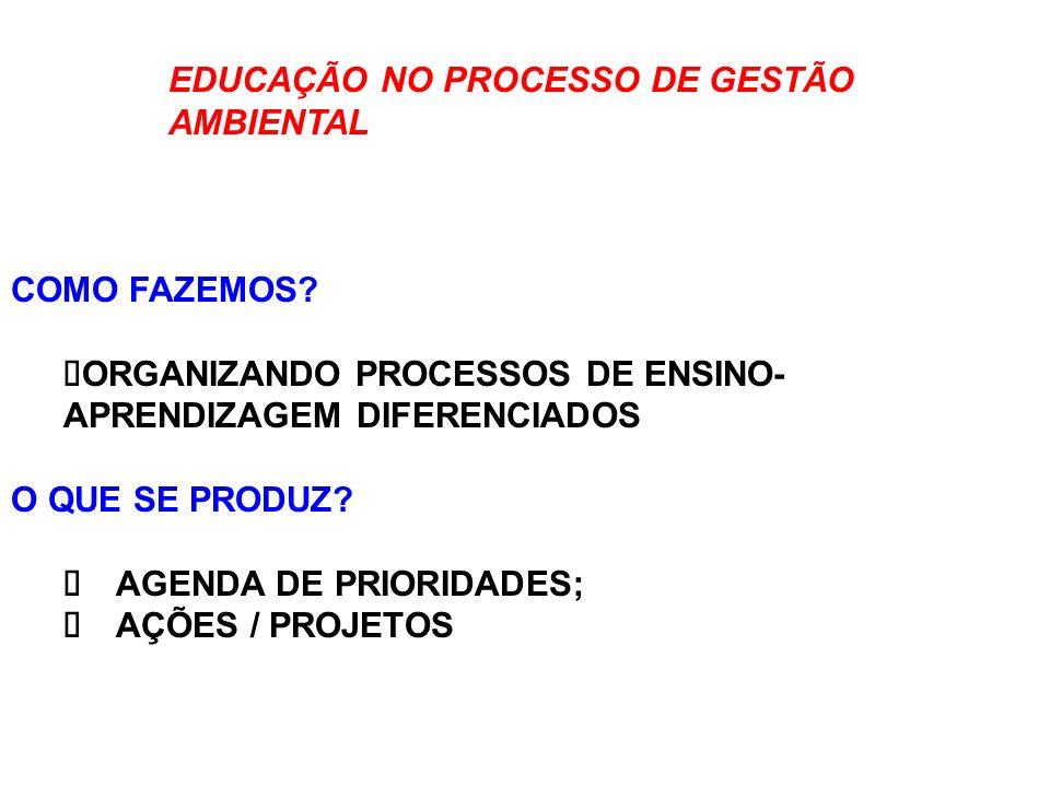 EDUCAÇÃO NO PROCESSO DE GESTÃO AMBIENTAL COMO FAZEMOS? ORGANIZANDO PROCESSOS DE ENSINO- APRENDIZAGEM DIFERENCIADOS O QUE SE PRODUZ? AGENDA DE PRIORIDA
