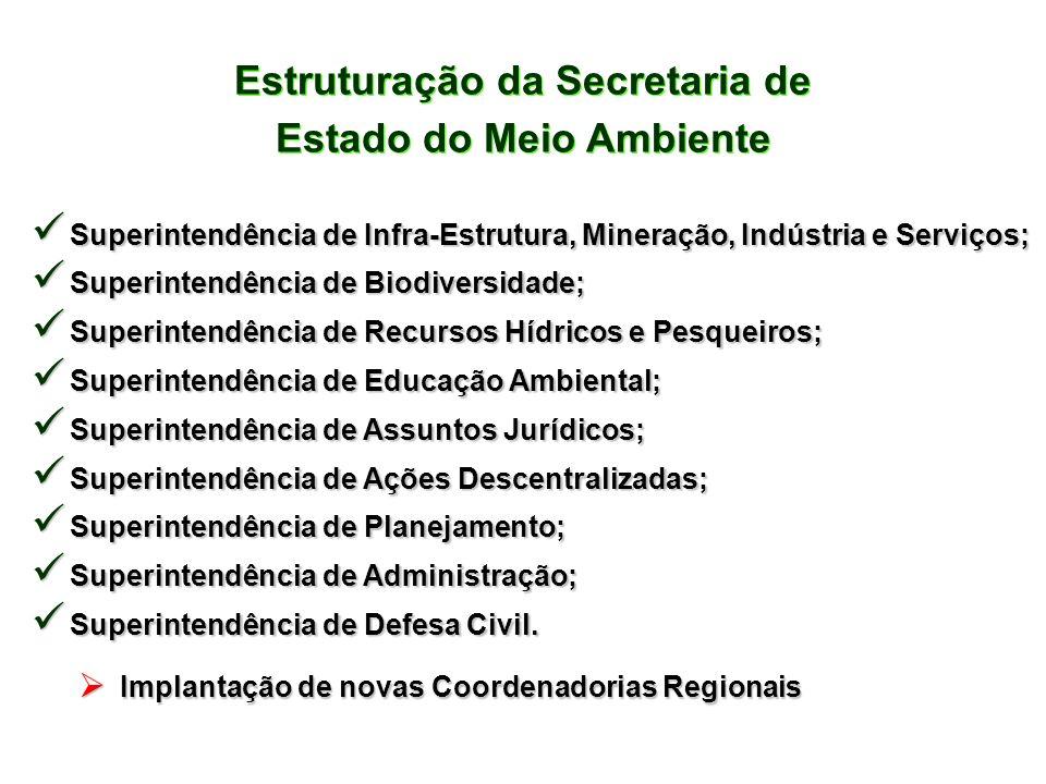 Estruturação da Secretaria de Estado do Meio Ambiente Estruturação da Secretaria de Estado do Meio Ambiente Superintendência Superintendência de Infra