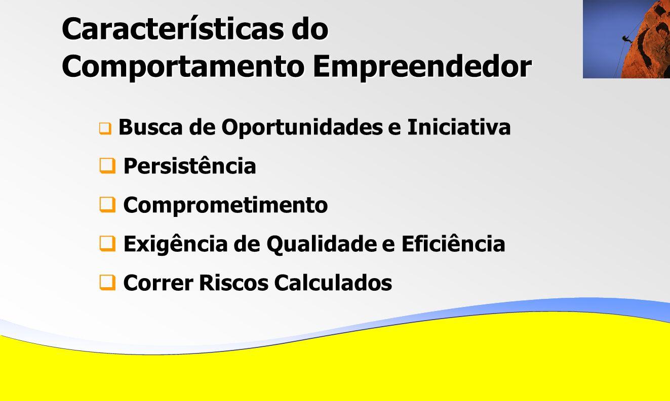 Características do Comportamento Empreendedor Busca de Oportunidades e Iniciativa Persistência Comprometimento Exigência de Qualidade e Eficiência Correr Riscos Calculados