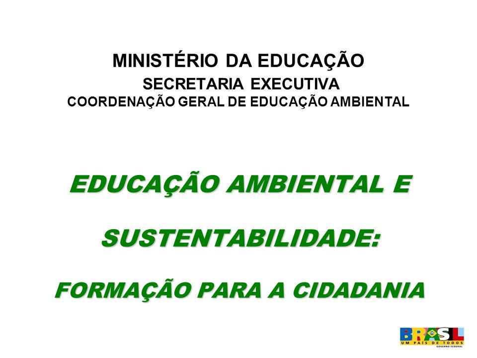 EDUCAÇÃO AMBIENTAL E SUSTENTABILIDADE: FORMAÇÃO PARA A CIDADANIA MINISTÉRIO DA EDUCAÇÃO SECRETARIA EXECUTIVA COORDENAÇÃO GERAL DE EDUCAÇÃO AMBIENTAL E