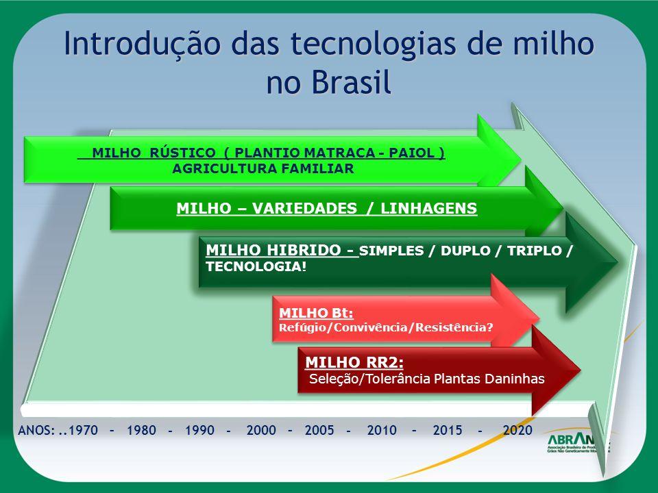 Introdução das tecnologias de milho no Brasil MILHO RÚSTICO ( PLANTIO MATRACA - PAIOL ) AGRICULTURA FAMILIAR MILHO RÚSTICO ( PLANTIO MATRACA - PAIOL )