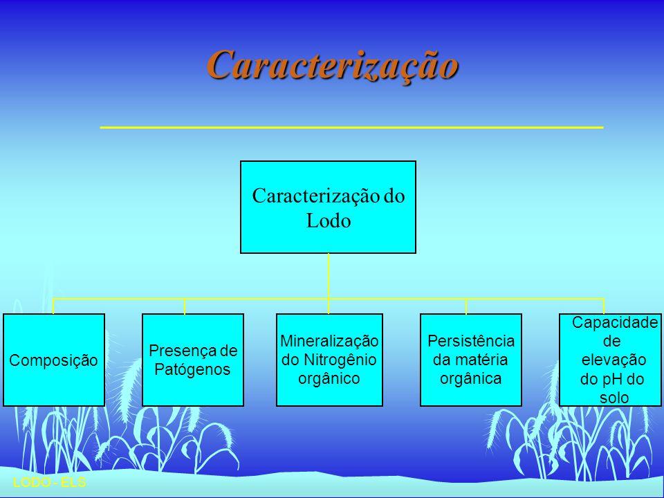 LODO - ELS Caracterização do Lodo Composição Presença de Patógenos Mineralização do Nitrogênio orgânico Persistência da matéria orgânica Capacidade de