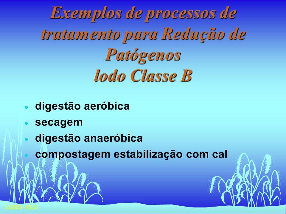 LODO - ELS Exemplos de processos de tratamento para Redução de Patógenos lodo Classe B digestão aeróbica secagem digestão anaeróbica compostagem estab