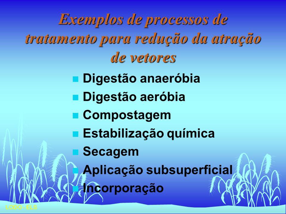 LODO - ELS Exemplos de processos de tratamento para redução da atração de vetores n Digestão anaeróbia n Digestão aeróbia n Compostagem n Estabilizaçã