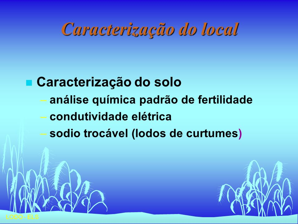 LODO - ELS Caracterização do local n Caracterização do solo –análise química padrão de fertilidade –condutividade elétrica –sodio trocável (lodos de c