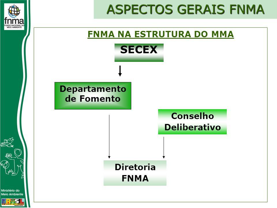Conselho Deliberativo Diretoria FNMA SECEX ASPECTOS GERAIS FNMA FNMA NA ESTRUTURA DO MMA Departamento de Fomento
