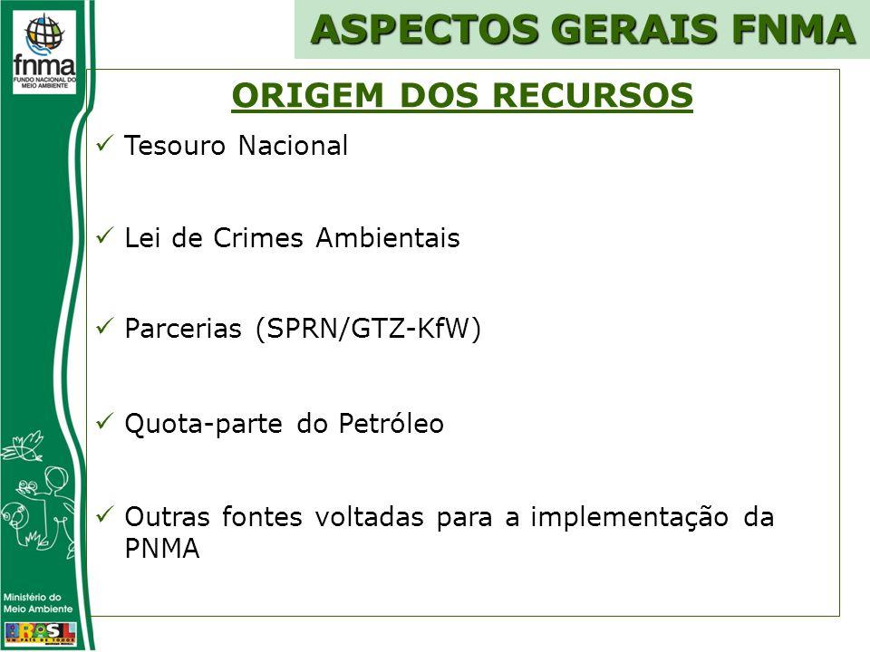 ORIGEM DOS RECURSOS Tesouro Nacional Lei de Crimes Ambientais Parcerias (SPRN/GTZ-KfW) Quota-parte do Petróleo Outras fontes voltadas para a implementação da PNMA ASPECTOS GERAIS FNMA