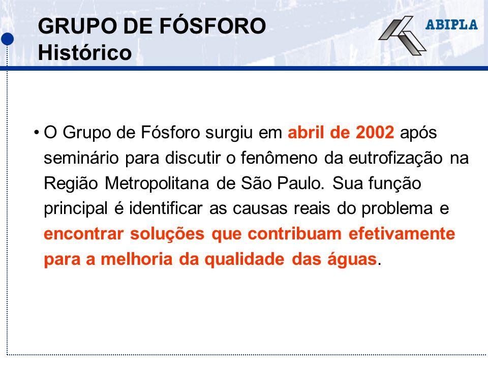 GRUPO DE FÓSFORO Histórico O Grupo de Fósforo surgiu em abril de 2002 após seminário para discutir o fenômeno da eutrofização na Região Metropolitana