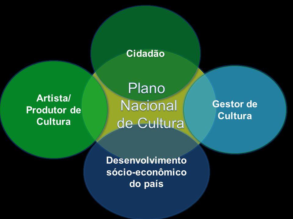 Cidadão Artista/ Produtor de Cultura Gestor de Cultura Desenvolvimento sócio-econômico do país