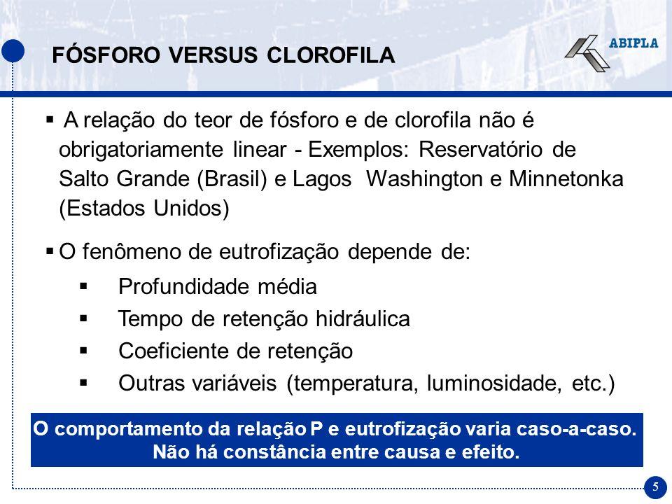 16 TRATAMENTO TERCIÁRIO DE ESGOTOS Viabilidade Econômica Segundo dados da Agência Nacional de Águas, o custo adicional da remoção de fósforo representa um acréscimo de cerca de 20% do custo total de implantação de uma estação (PRODES, 2002).