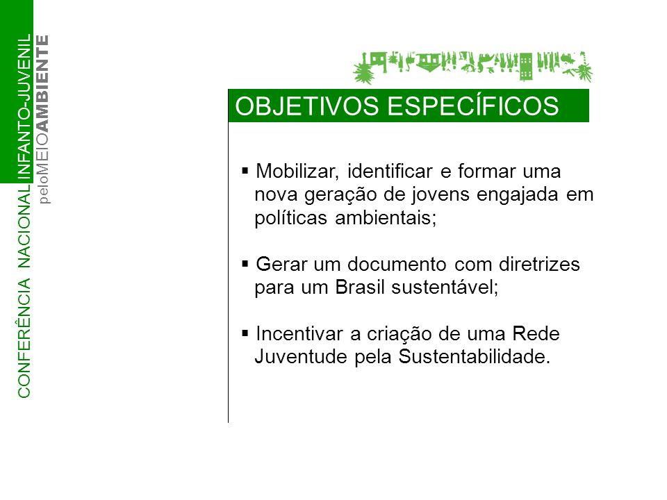 COMISSÕES ORGANIZADORAS NOS ESTADOS NÚCLEO OPERATIVO IBAMA/ NEA Secret.