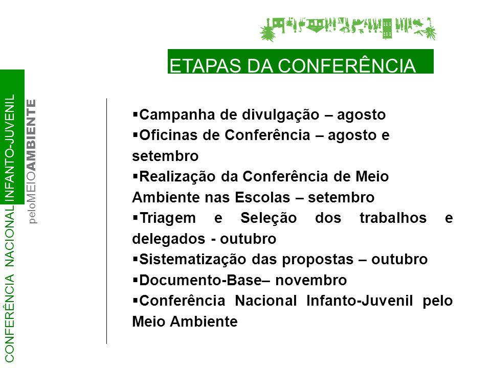Pré-Conferências Regionais e/ou Estaduais Espírito Santo Alagoas Distrito Federal Paraná Rondônia Rio Grande do Sul Pré-Conferências Nacionais (adulto) Eleição de delegados jovens Piauí (6) Maranhão (14) Paraíba (5) Mato Grosso (3) Alagoas (3) Tocantins (2) Ceará, Goiás, Mato Grosso do Sul, Rondônia (?) CONFERÊNCIA NACIONAL INFANTO-JUVENIL pelo MEIO AMBIENTE RESULTADOS