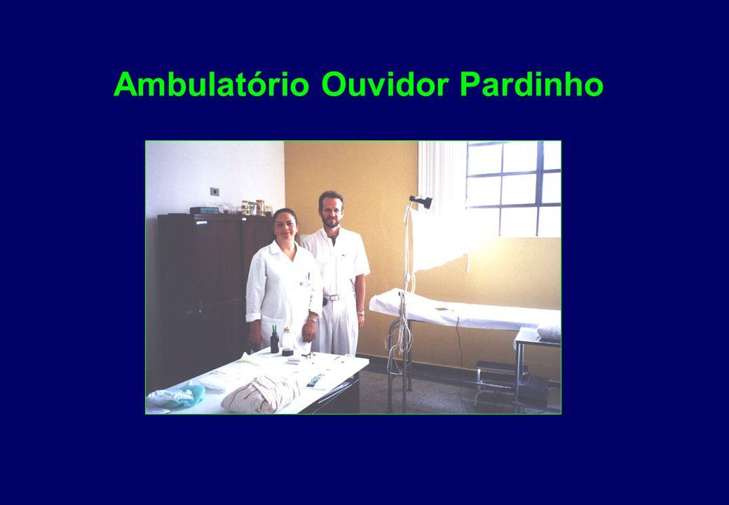 Unidade de Saúde Vila Hauer