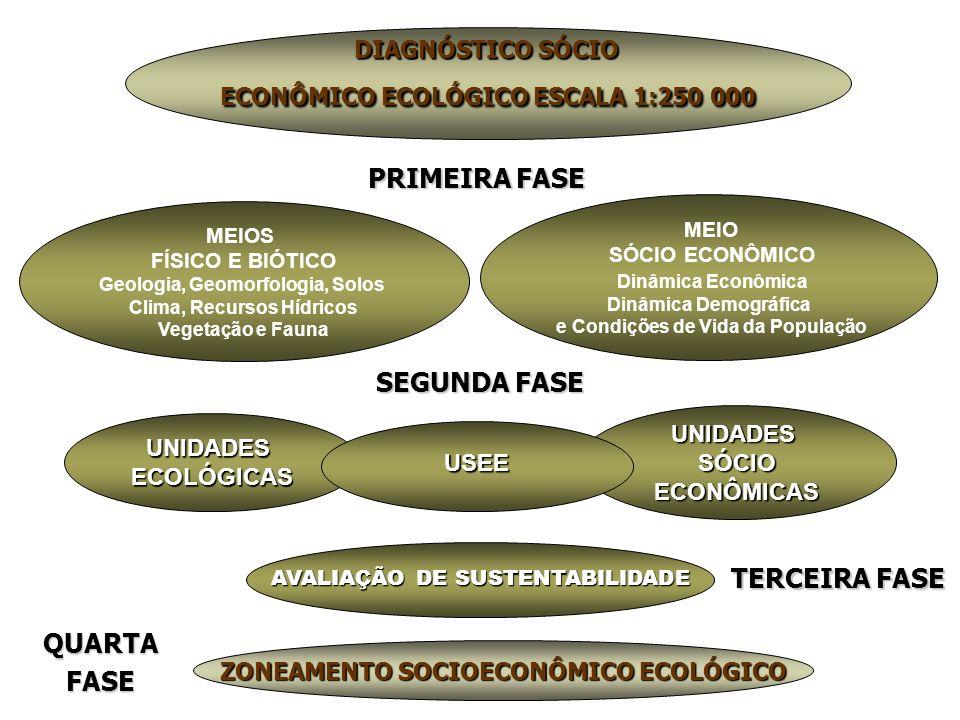 UNIDADESECOLÓGICAS SEGUNDA FASE UNIDADESSÓCIOECONÔMICAS USEE ZONEAMENTO SOCIOECONÔMICO ECOLÓGICO DIAGNÓSTICO SÓCIO ECONÔMICO ECOLÓGICO ESCALA 1:250 000 MEIOS FÍSICO E BIÓTICO Geologia, Geomorfologia, Solos Clima, Recursos Hídricos Vegetação e Fauna MEIO SÓCIO ECONÔMICO Dinâmica Econômica Dinâmica Demográfica e Condições de Vida da População TERCEIRA FASE QUARTAFASE PRIMEIRA FASE AVALIAÇÃO DE SUSTENTABILIDADE