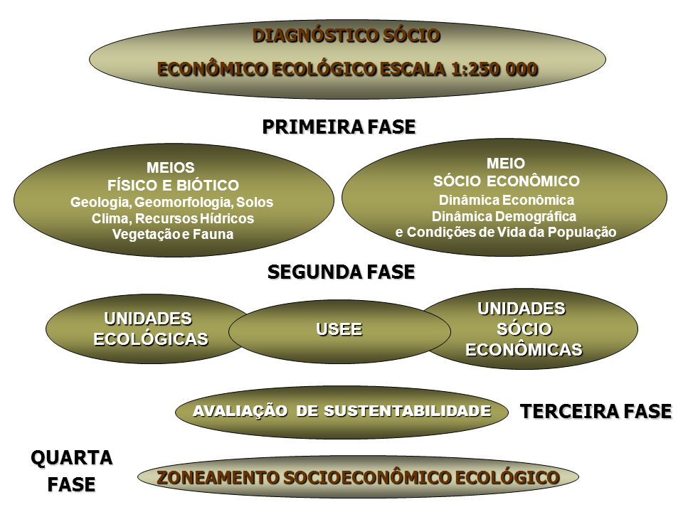 UNIDADESECOLÓGICAS SEGUNDA FASE UNIDADESSÓCIOECONÔMICAS USEE ZONEAMENTO SOCIOECONÔMICO ECOLÓGICO DIAGNÓSTICO SÓCIO ECONÔMICO ECOLÓGICO ESCALA 1:250 00