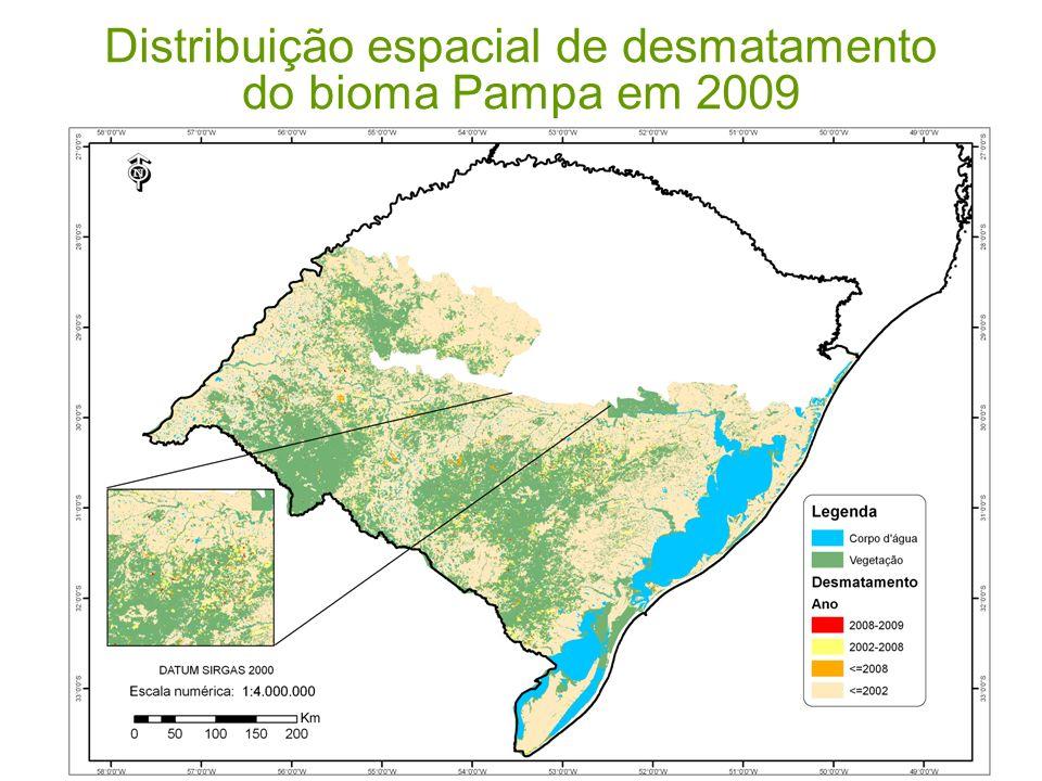 Distribuição espacial de desmatamento do bioma Pampa em 2009