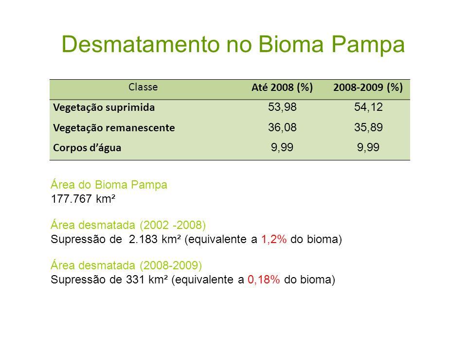 Desmatamento no Bioma Pampa ClasseAté 2008 (%)2008-2009 (%) Vegetação suprimida 53,9854,12 Vegetação remanescente 36,0835,89 Corpos dágua 9,99 Área do