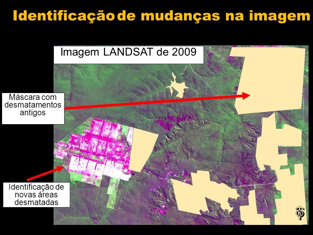 Exemplo de uma carta mapeada Desmatamento no período 2008-2009 Desmatamento ocorrido antes de 2008 Remanescente natural Corpo dágua