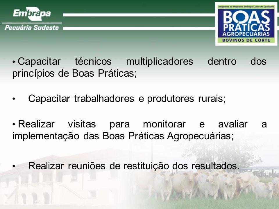 Capacitar técnicos multiplicadores dentro dos princípios de Boas Práticas; Capacitar trabalhadores e produtores rurais; Realizar visitas para monitora