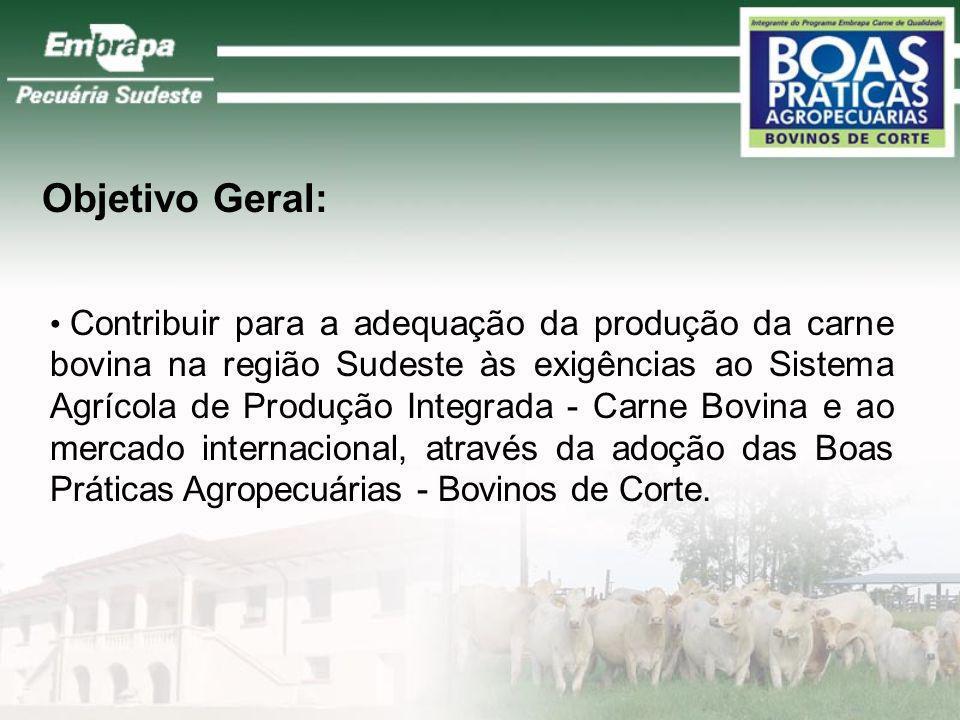 Formação e manejo de pastagens Suplementação alimentar Identificação animal e rastreamento Controle sanitário Manejo reprodutivo