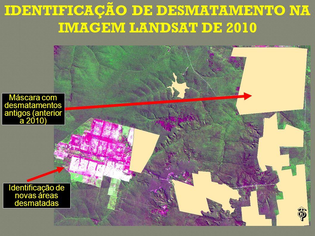 Máscara com desmatamentos antigos (anterior a 2010) Identificação de novas áreas desmatadas IDENTIFICAÇÃO DE DESMATAMENTO NA IMAGEM LANDSAT DE 2010