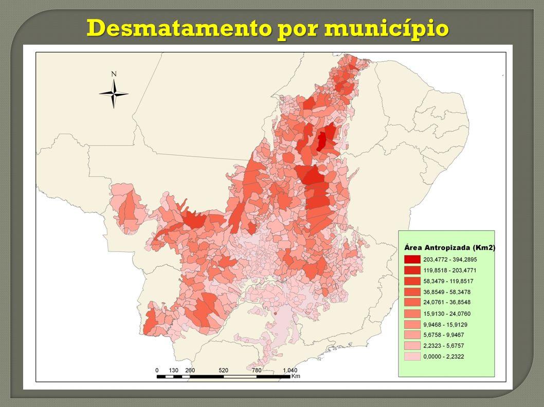 Desmatamento por município
