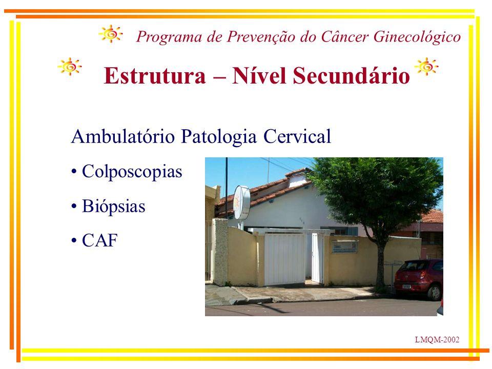 LMQM-2002 Programa de Prevenção do Câncer Ginecológico Estrutura – Nível Secundário Ambulatório Patologia Cervical Colposcopias Biópsias CAF