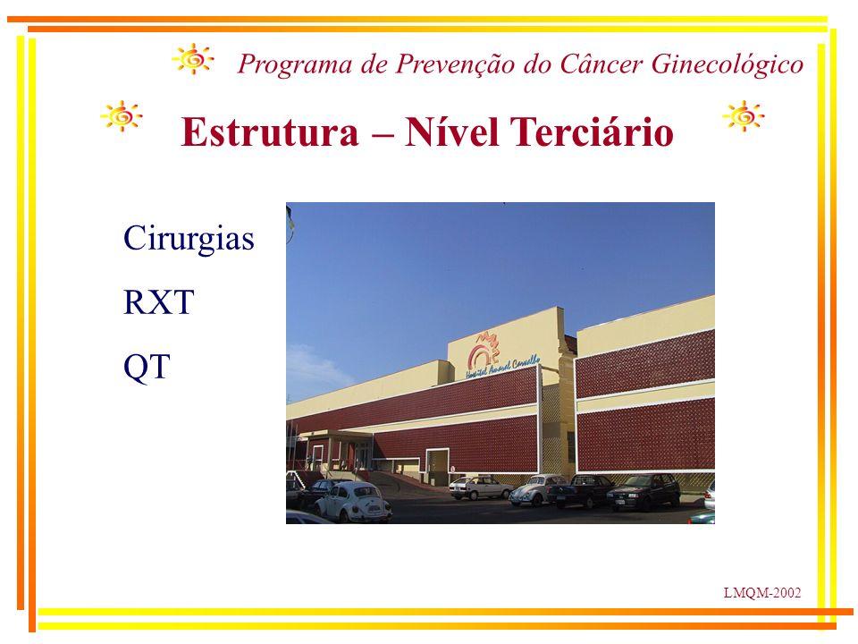 LMQM-2002 Programa de Prevenção do Câncer Ginecológico Estrutura – Nível Terciário Cirurgias RXT QT