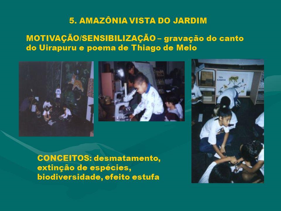5. AMAZÔNIA VISTA DO JARDIM MOTIVAÇÃO/SENSIBILIZAÇÃO – gravação do canto do Uirapuru e poema de Thiago de Melo CONCEITOS: desmatamento, extinção de es