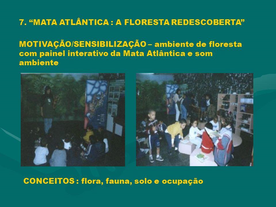 7. MATA ATLÂNTICA : A FLORESTA REDESCOBERTA MOTIVAÇÃO/SENSIBILIZAÇÃO – ambiente de floresta com painel interativo da Mata Atlântica e som ambiente CON