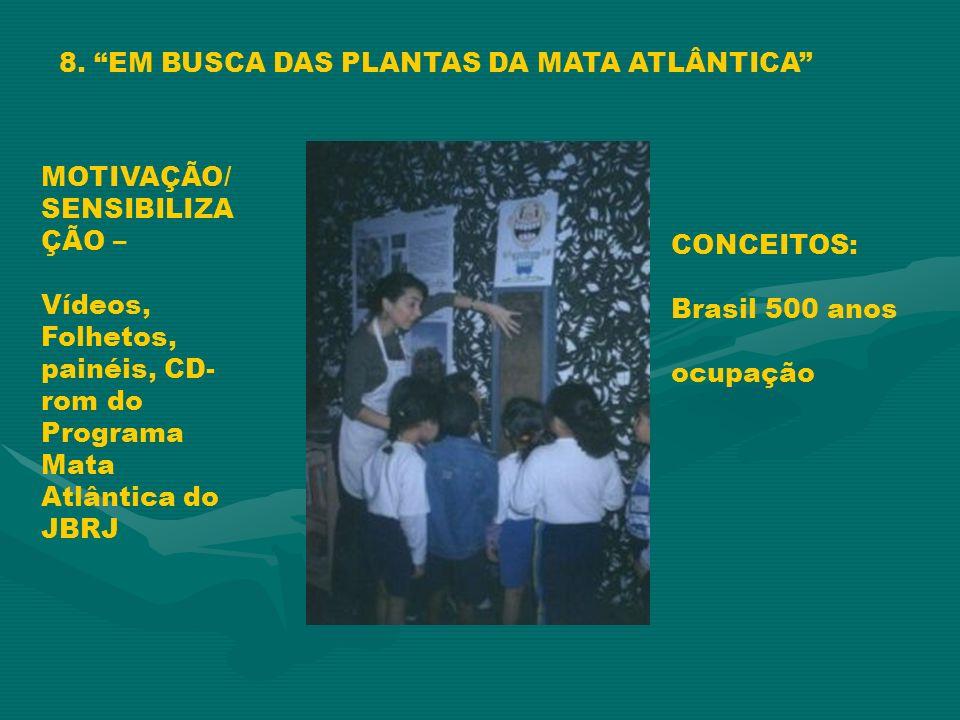8. EM BUSCA DAS PLANTAS DA MATA ATLÂNTICA MOTIVAÇÃO/ SENSIBILIZA ÇÃO – Vídeos, Folhetos, painéis, CD- rom do Programa Mata Atlântica do JBRJ CONCEITOS