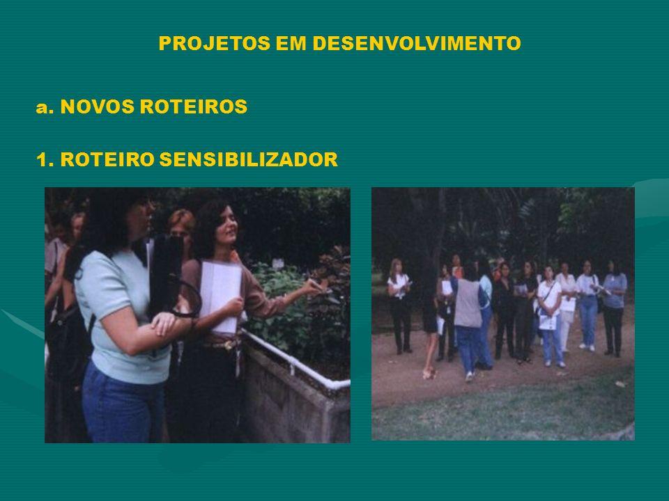 PROJETOS EM DESENVOLVIMENTO a. NOVOS ROTEIROS 1. ROTEIRO SENSIBILIZADOR