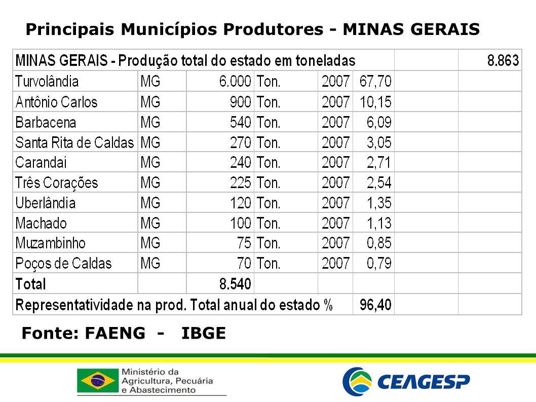 Fonte: FAENG - IBGE Principais Municípios Produtores - MINAS GERAIS