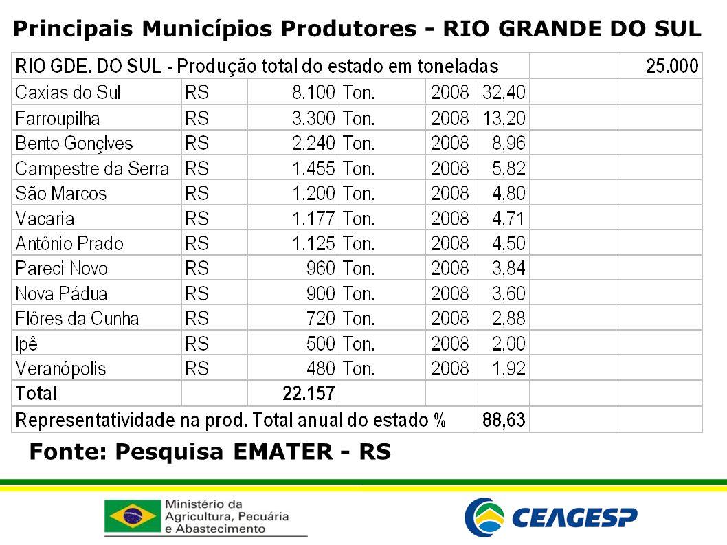 Fonte: Pesquisa EMATER - RS Principais Municípios Produtores - RIO GRANDE DO SUL