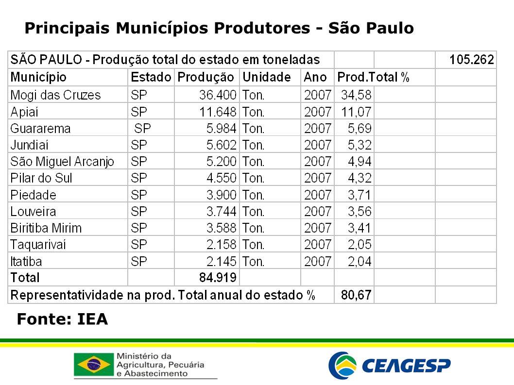 Fonte: IEA Principais Municípios Produtores - São Paulo