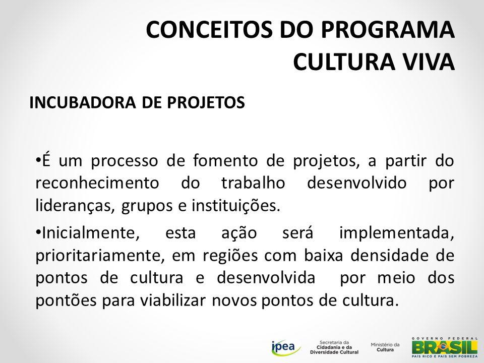 INCUBADORA DE PROJETOS É um processo de fomento de projetos, a partir do reconhecimento do trabalho desenvolvido por lideranças, grupos e instituições.