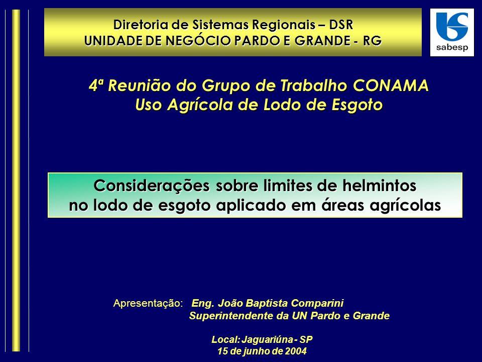 Diretoria de Sistemas Regionais – DSR UNIDADE DE NEGÓCIO PARDO E GRANDE - RG Local: Jaguariúna - SP 15 de junho de 2004 Apresentação: Eng.