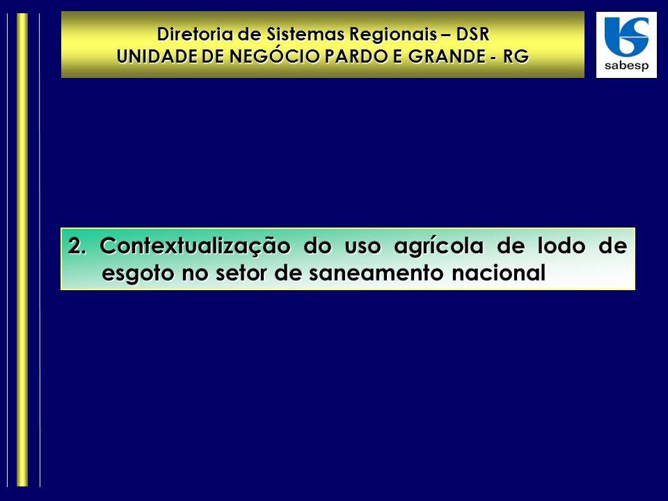Diretoria de Sistemas Regionais – DSR UNIDADE DE NEGÓCIO PARDO E GRANDE - RG 2.
