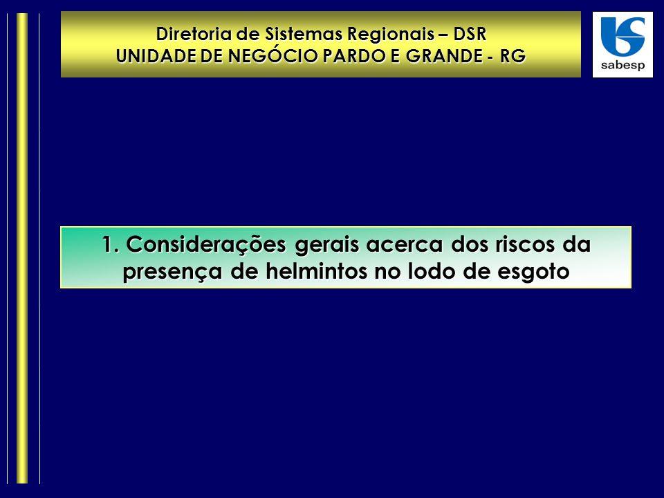 Diretoria de Sistemas Regionais – DSR UNIDADE DE NEGÓCIO PARDO E GRANDE - RG 1.