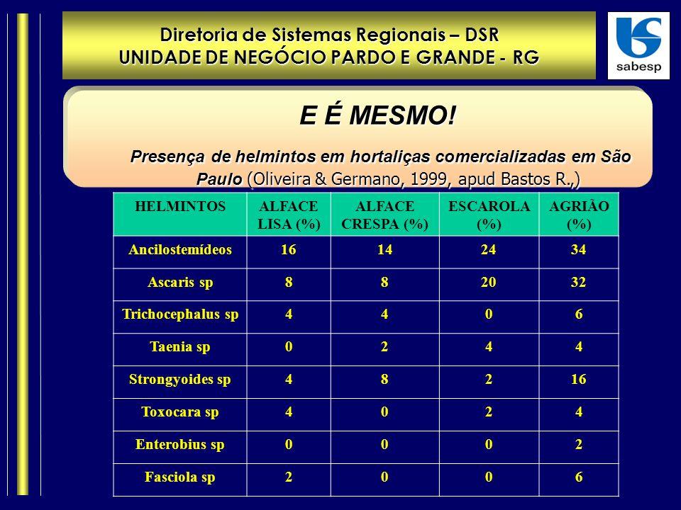 Diretoria de Sistemas Regionais – DSR UNIDADE DE NEGÓCIO PARDO E GRANDE - RG E É MESMO.