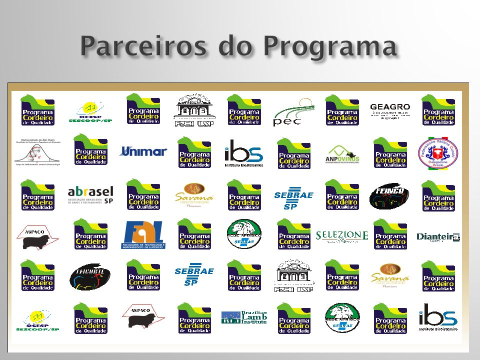 Parceiros do Programa