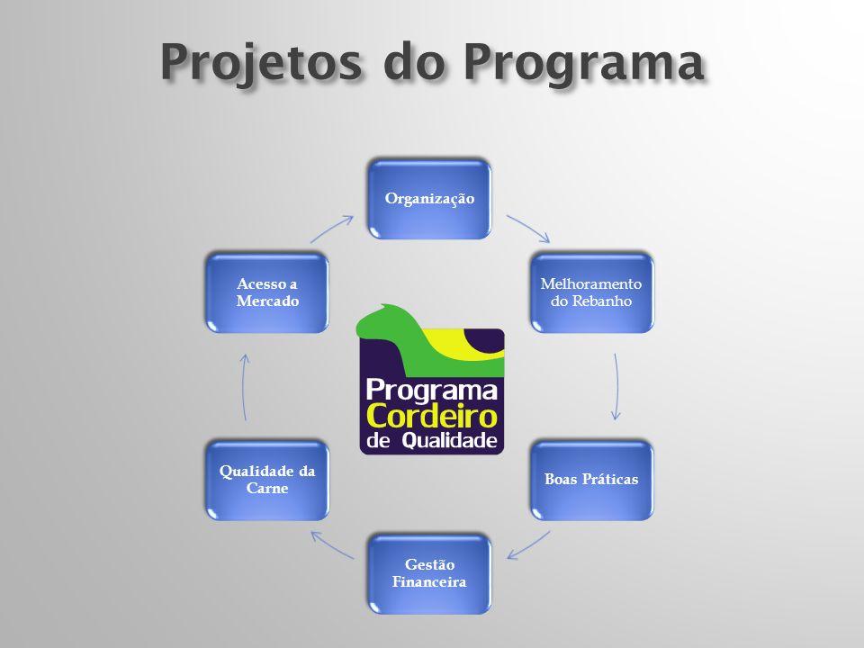 Projetos do Programa