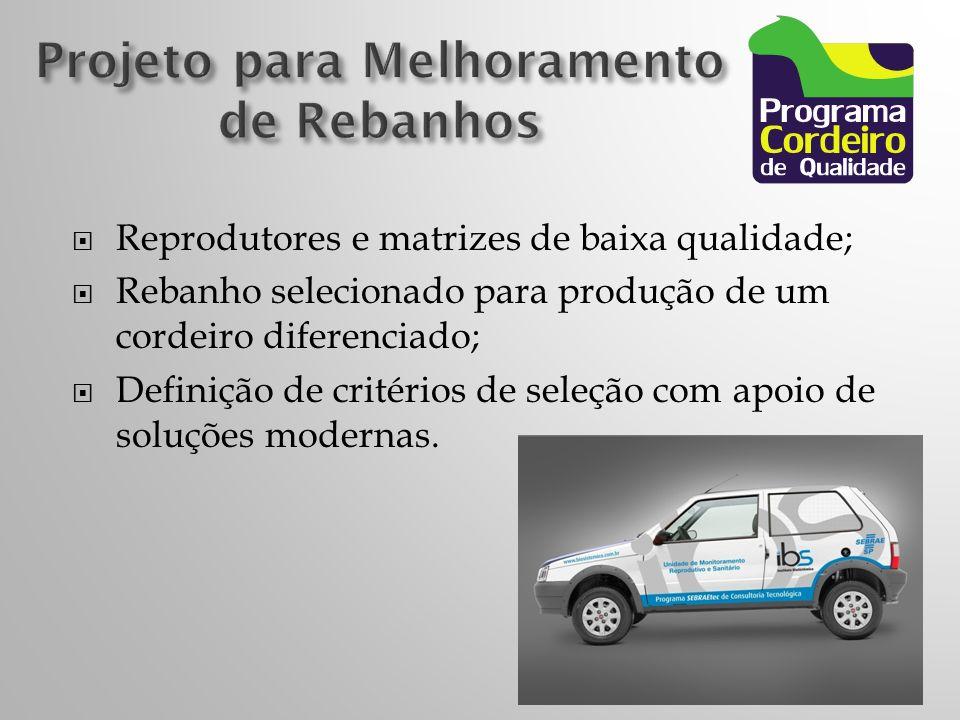 Reprodutores e matrizes de baixa qualidade; Rebanho selecionado para produção de um cordeiro diferenciado; Definição de critérios de seleção com apoio de soluções modernas.