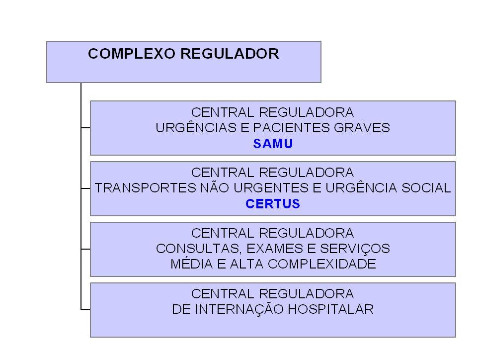 3.3. Organização da assistência: complexo regulador