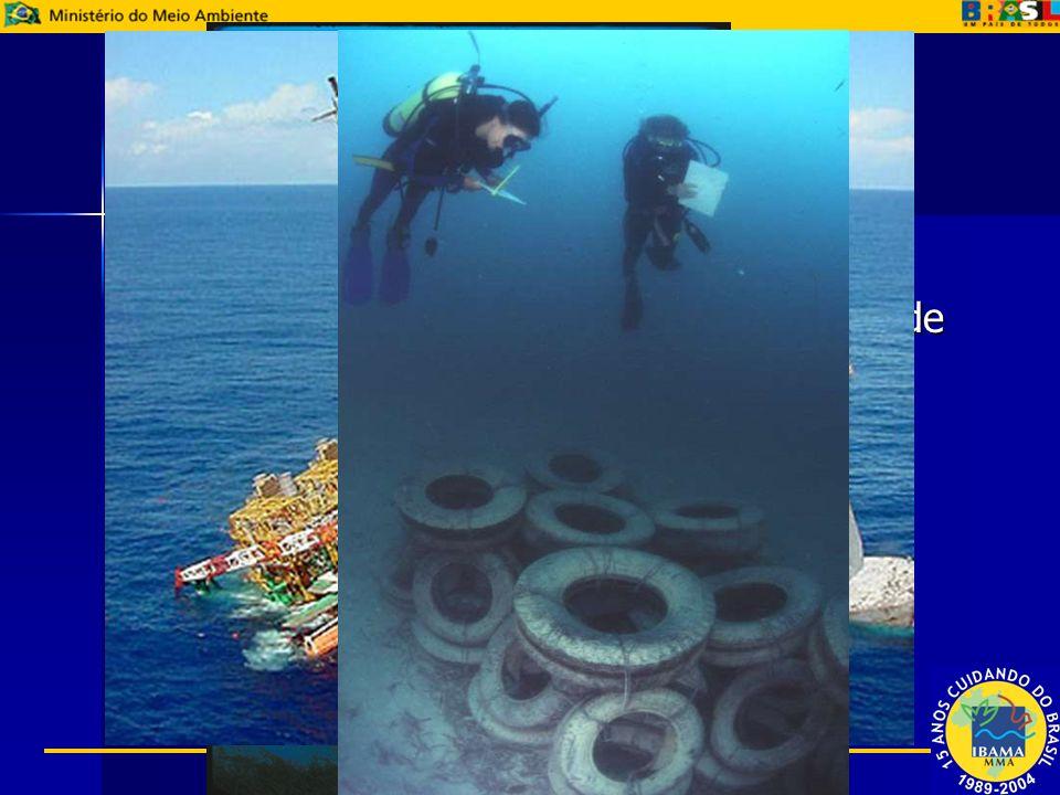 Demanda Crescente demanda pelo tema Crescente demanda pelo tema –Descomissionamento de Plataformas de Petróleo; –Afundamento de Embarcações; –Destinaç