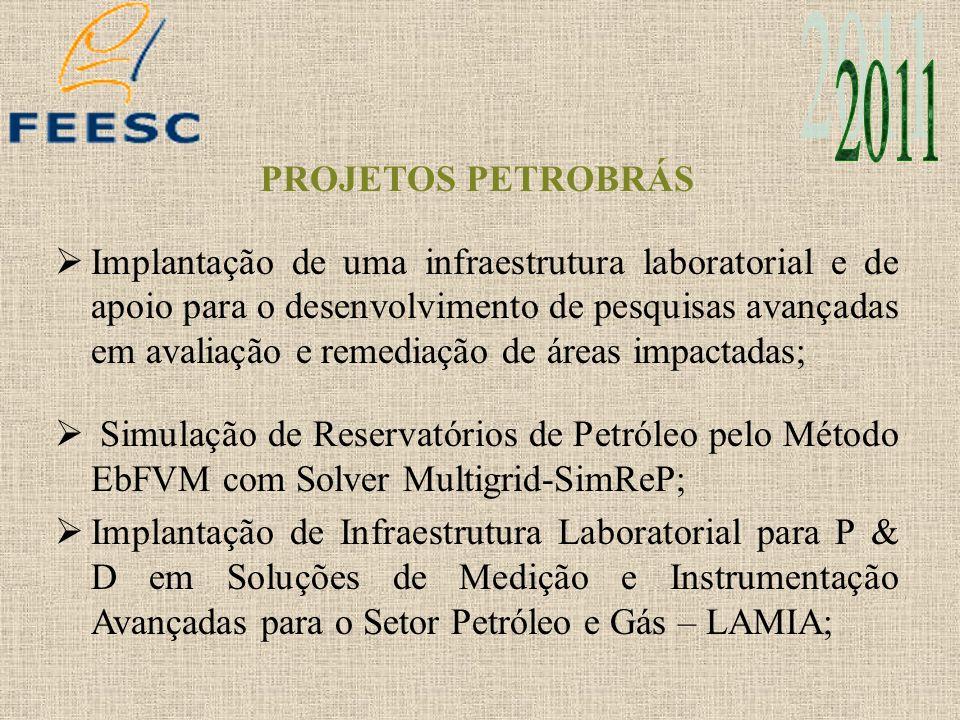 PROJETOS PETROBRÁS Implantação de uma infraestrutura laboratorial e de apoio para o desenvolvimento de pesquisas avançadas em avaliação e remediação d