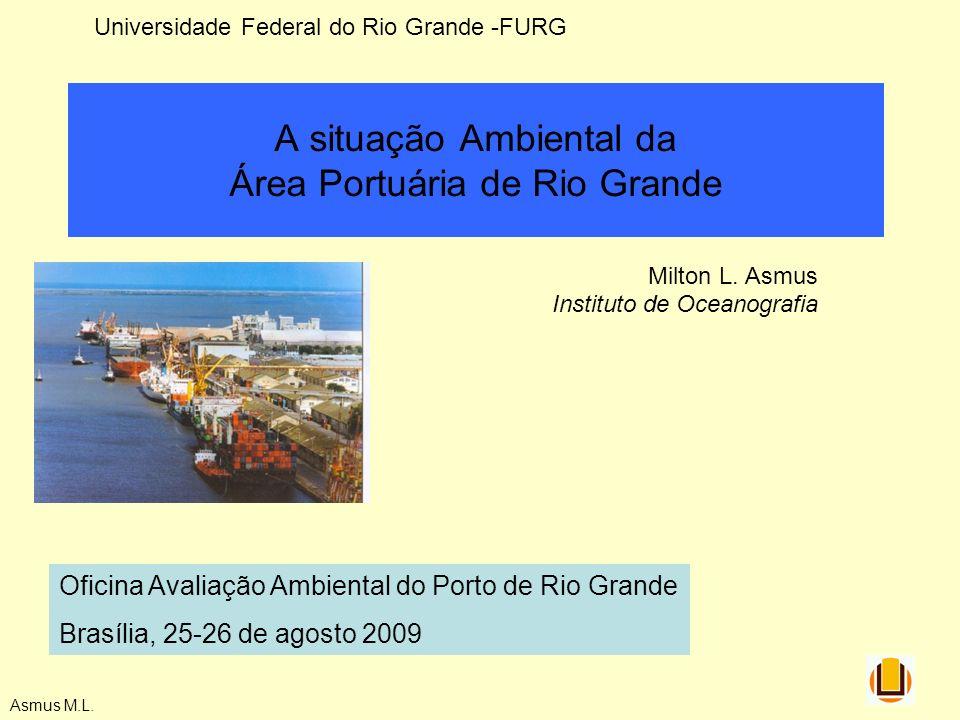 Asmus M.L. A situação Ambiental da Área Portuária de Rio Grande Milton L. Asmus Instituto de Oceanografia Oficina Avaliação Ambiental do Porto de Rio