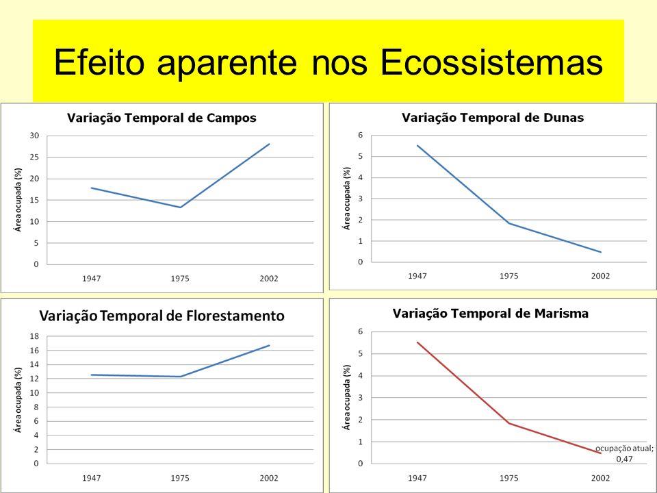 Efeito aparente nos Ecossistemas Asmus M.L.