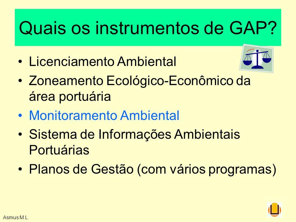 Asmus M.L. Quais os instrumentos de GAP? Licenciamento Ambiental Zoneamento Ecológico-Econômico da área portuária Monitoramento Ambiental Sistema de I