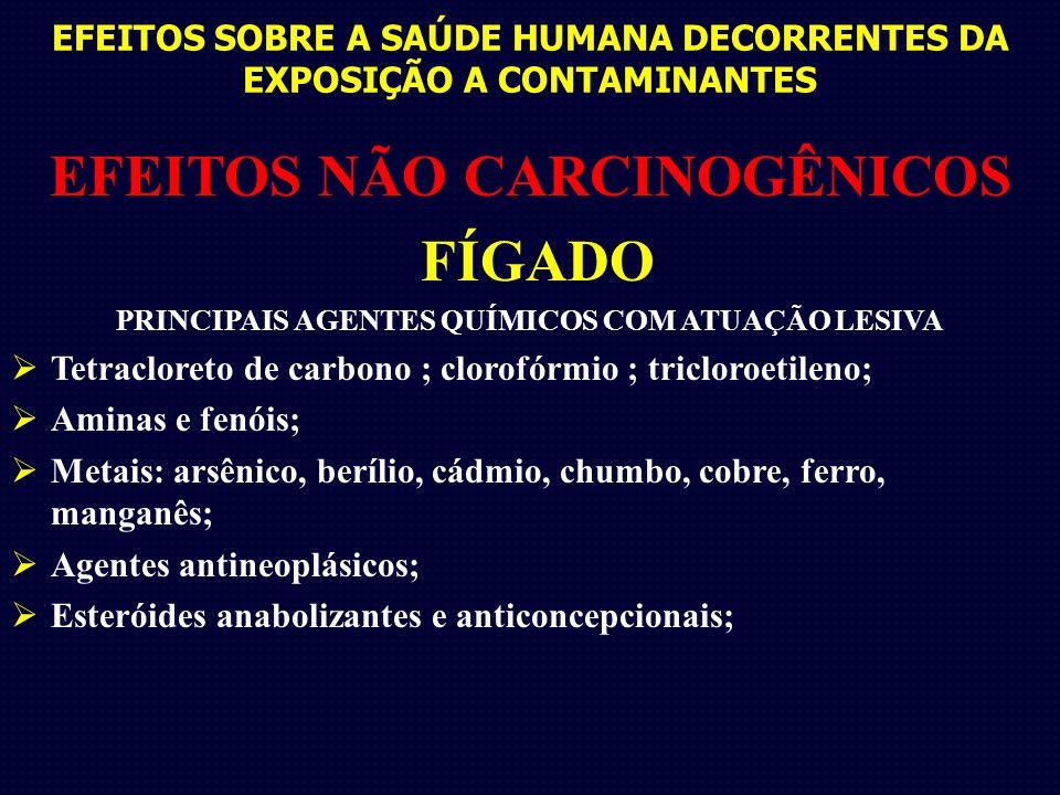EFEITOS SOBRE A SAÚDE HUMANA DECORRENTES DA EXPOSIÇÃO A CONTAMINANTES EFEITOS NÃO CARCINOGÊNICOS FÍGADO PRINCIPAIS AGENTES QUÍMICOS COM ATUAÇÃO LESIVA